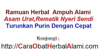 Obat alami Asam Urat-Rematik NULANG ASLI herbal tradisional