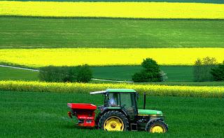 La agricultura es un pilar fundamental dentro de la cadena alimentaria.