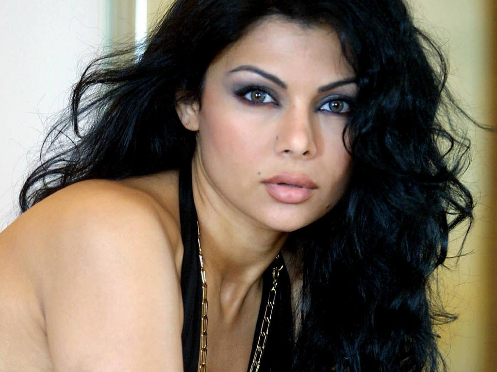 Download Sex Pictures Of Haifa Wahbi 94