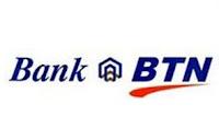 USB pen laser BANK BTN