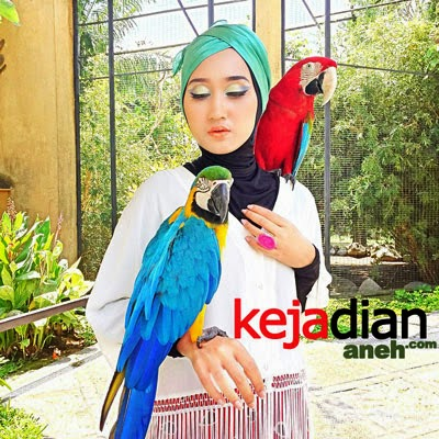 Dian Pelangi, Fashion Blogger Ber Hijab Indonesia