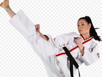Program Latihan Kecepatan Tendangan Taekwondo Full Power