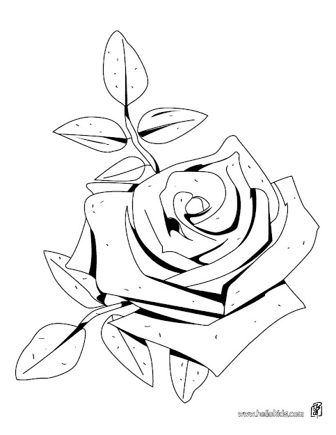 Rose American Beauty Coloring Page