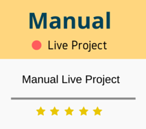 Manual Testing Live Project Training