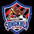 Daftar Skuad Pemain Songkhla United FC 2017