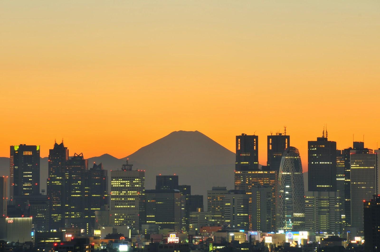 Unique Japan Tours Honeymoon Mt Fuji Tokyo Tower