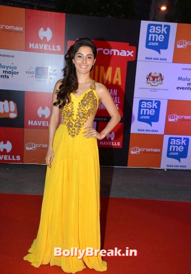 , Isha Talwar Backless Gown Pics at SIIMA Awards 2014
