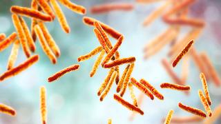 http://www.iflscience.com/health-and-medicine/worsening-epidemic-flesheating-bacteria-australia-baffles-experts/
