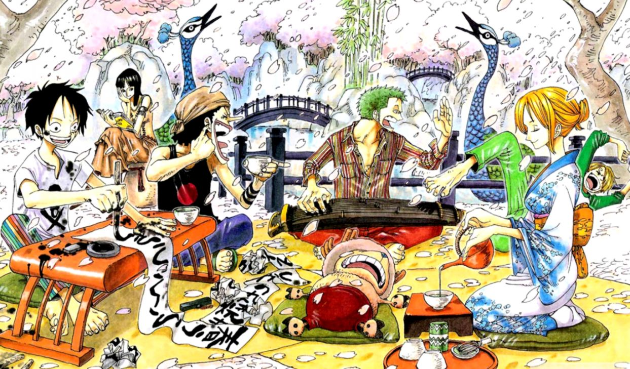 Fun One Piece Wallpaper Views Wallpapers