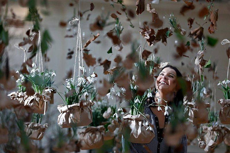 Plantas con flores de Galanthus (campanillas) suspendidas del techo