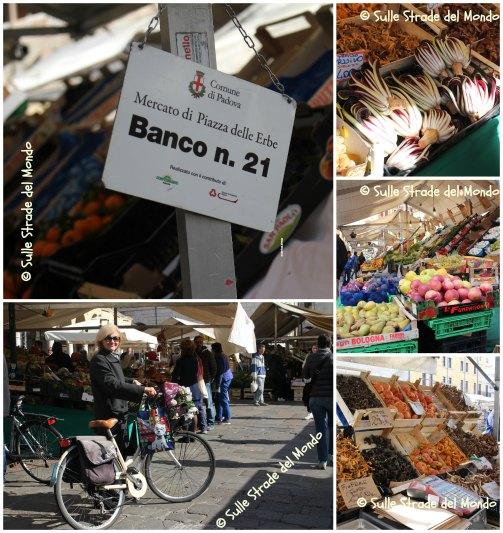 Sulle strade del mondo il travel blog di simonetta clucher for Mercato antiquariato padova