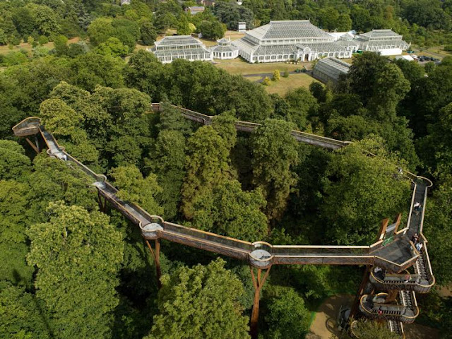 Kew Gardens in Summer Tree Walk - www.All-About-London.com