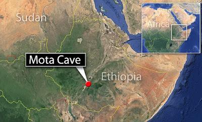 الحمض النووي ل MOTA يؤكد أن 25% من الأثيوبيين ينحدرون من المزارعين الأوروبيين