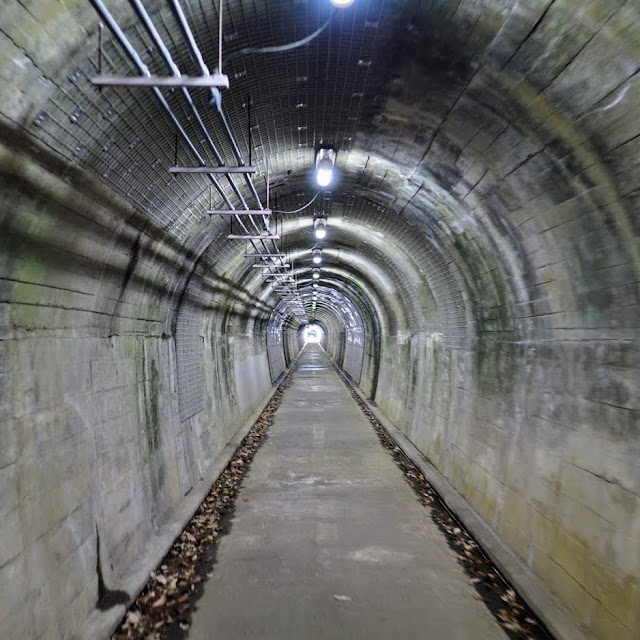 野山北自転車道 横田トンネル