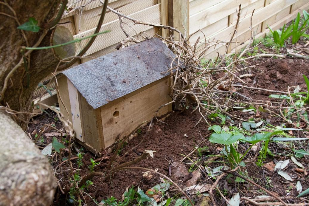 NestBoxTech: Bumblebee nest box