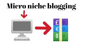 Micro niche blogging, what is Micro niche,