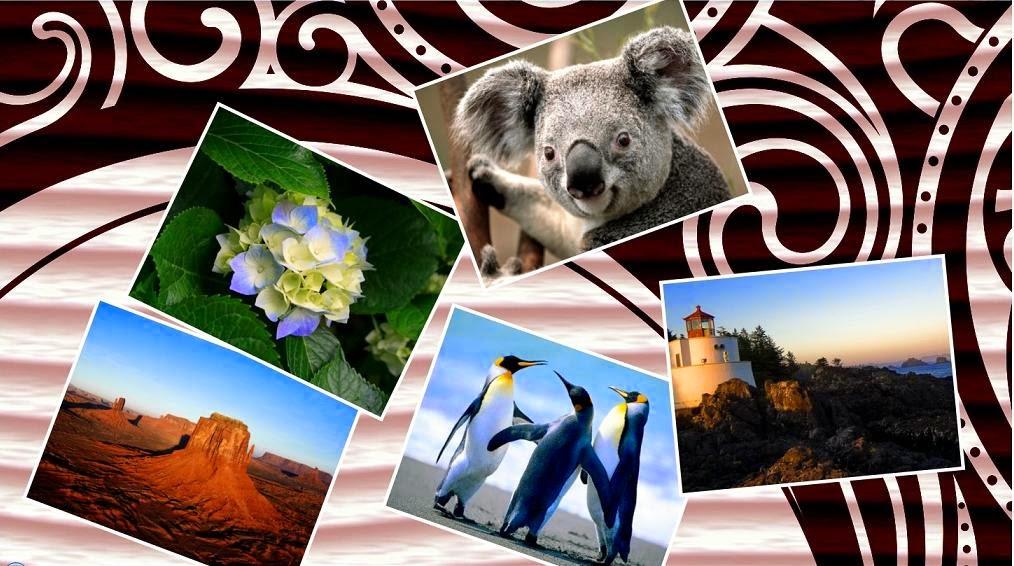 تحميل برنامج دمج وتجميع الصور مع بعض للكمبيوتر Photo Collage