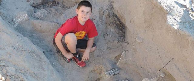 Un niño descubre un fósol de más de 1.2 millones de años