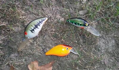 Crankbaits, imprescindibles en el kit de iniciación a la pesca del black bass