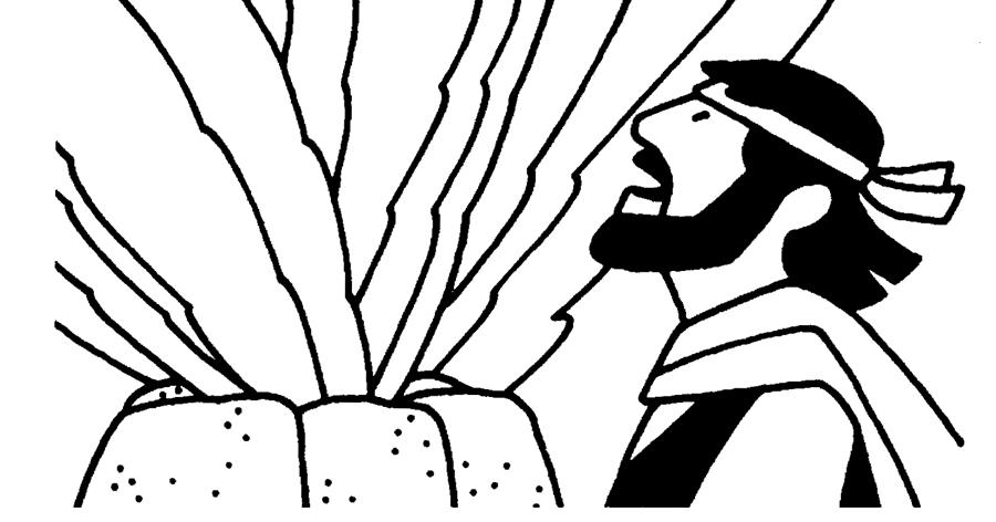 BibleFactsPlusII: MOUNT CARMEL