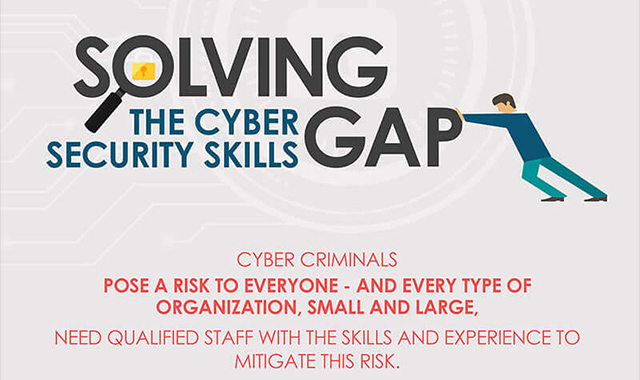 Solving the Cyber Security Skills Gap