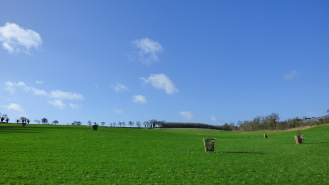The field view opposite The Hollow Bottom pub, Guiting Power, Cotswolds