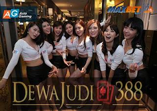 www.dewajudi388.com
