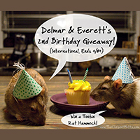 Delmar & Everett's 2nd birthday giveaway