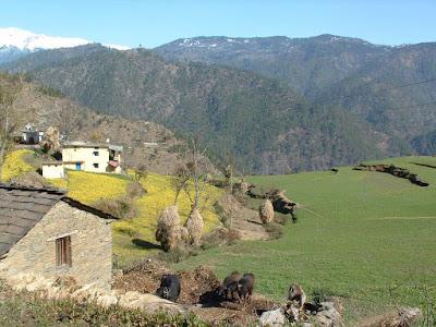 Beautiful Places in Gwaldam