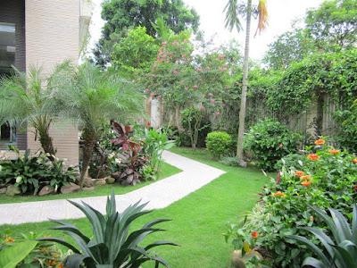 Đường dạo mềm mại trong sân vườn