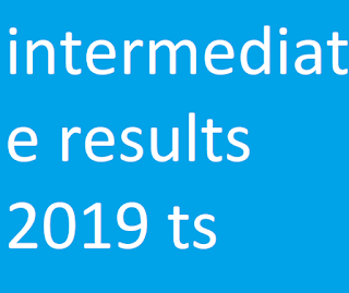 intermediate results 2019 ts