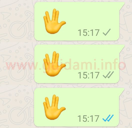 WhatsApp doppie spunte blu e grigie