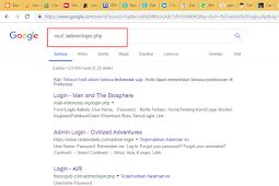 Fungsi dan pengaruh No Index pada halaman web