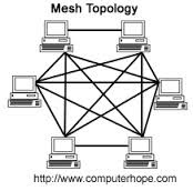 What are different types of network topologies? Expain the