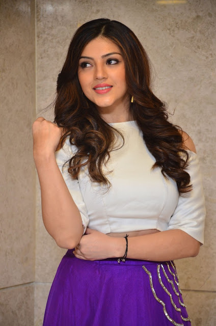 Mehreen Kaur Pirzada in Long Skirt and Crop Top at Okkadochadu Movie Audio Launch