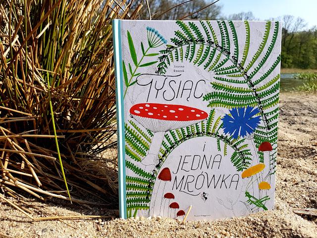 Tysiąc i jedna mrówka - Joanna Rzezak - Nasza Księgarnia - książeczki dla dzieci - zabawy matematyczne dla dzieci - zabawa w liczenie - nauka przez zabawę