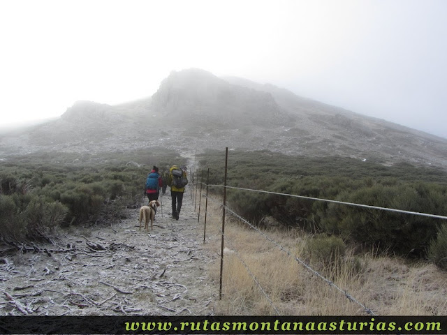 Ruta al Cerro Pedroso: Último tramo al Cerro Pedroso
