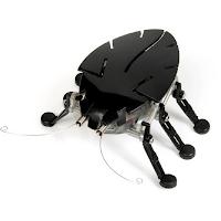 Un insecte robot qui se déplace tout seul.