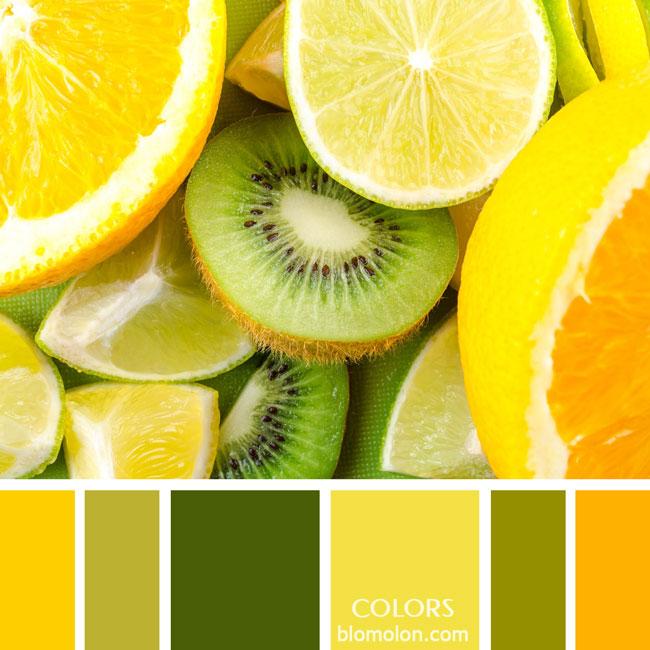 variedad_en_color_paletas_colores_1c