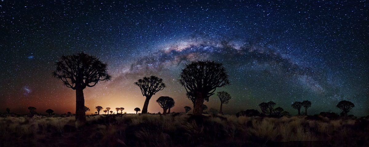 Milky Way Galaxy over Quiver Tree Forest