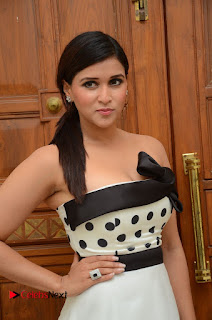 Mannara Chopra Pictures at Jakkanna Audio Launch ~ Celebs Next