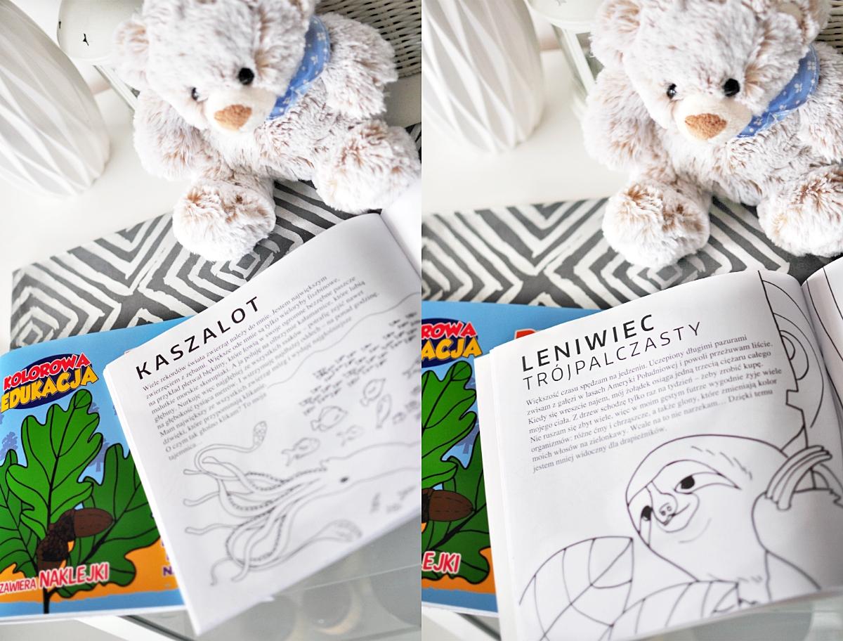 edukacyjne-kolorowanki-dla-dzieci
