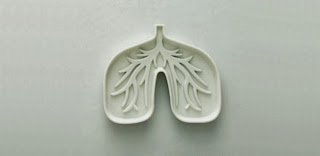 Lung Cancer Rise in Scottish Women Over 40 Years