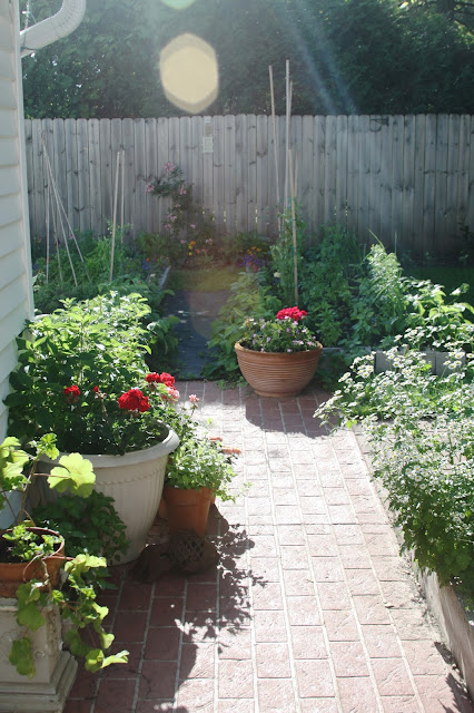 garden, gardens, spring, raised beds, container gardening, Anne Butera, My Giant Strawberry