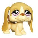 Littlest Pet Shop Singles Basset Hound (#1465) Pet