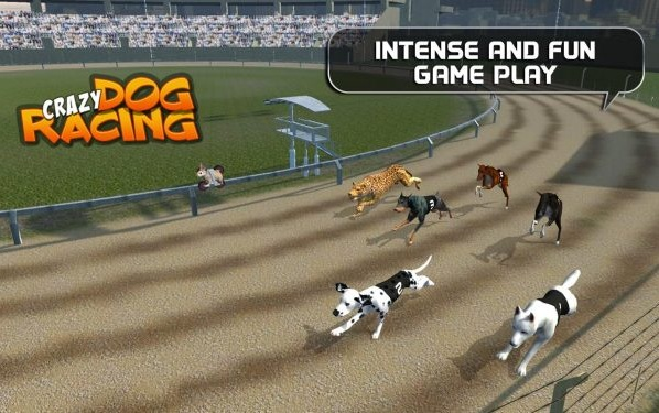 Crazy Dog Racing Mod Apk v2.2.9 (Unlimited Money)