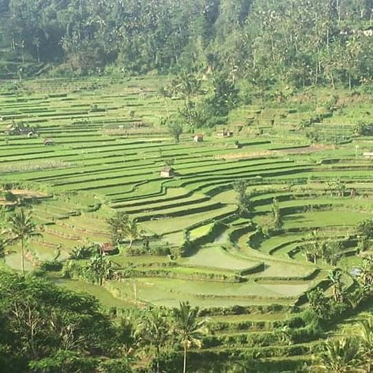 Wisata alam yang di ber penghargaan oleh UNESCO