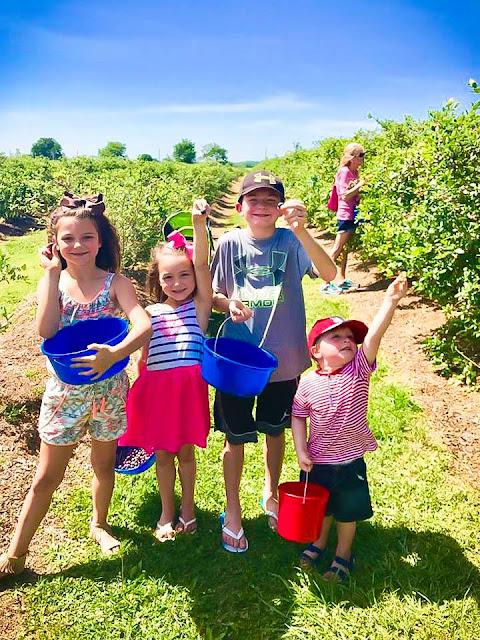 The Life on Hudson Street Blog Kids at Thunderbird Farm in Broken Arrow, Ok