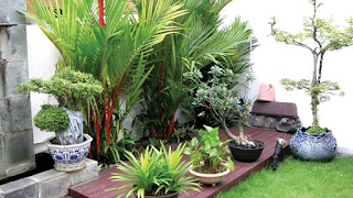 Tips For Making A Fresh And Comfortable Indoor Garden For Family