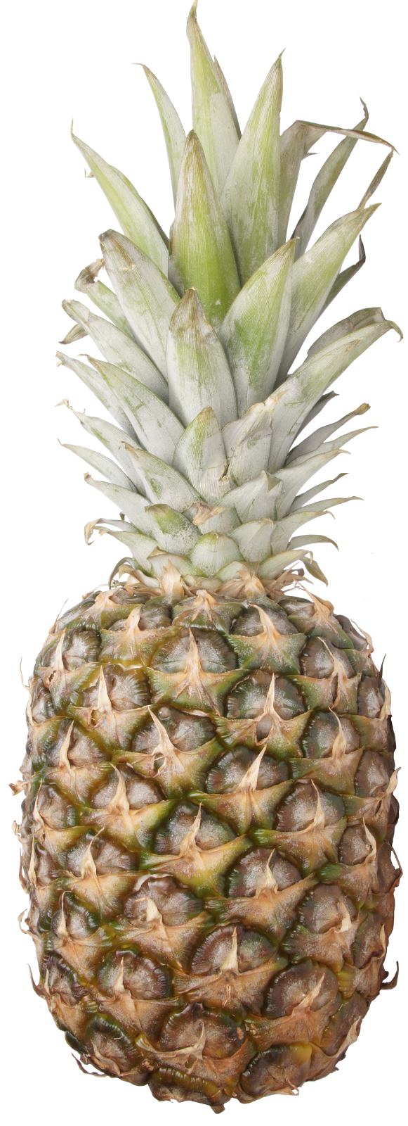 Imagens Limpas: Frutas - abacaxi - piña - pineapple - ananas - PNG - Transparente